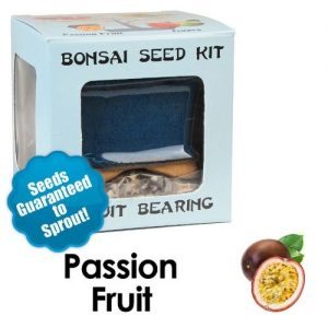Passion Fruit Bonsai Seed Kit