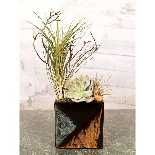 Mosaic Rectangle Air Plants, Succulents, Cactus