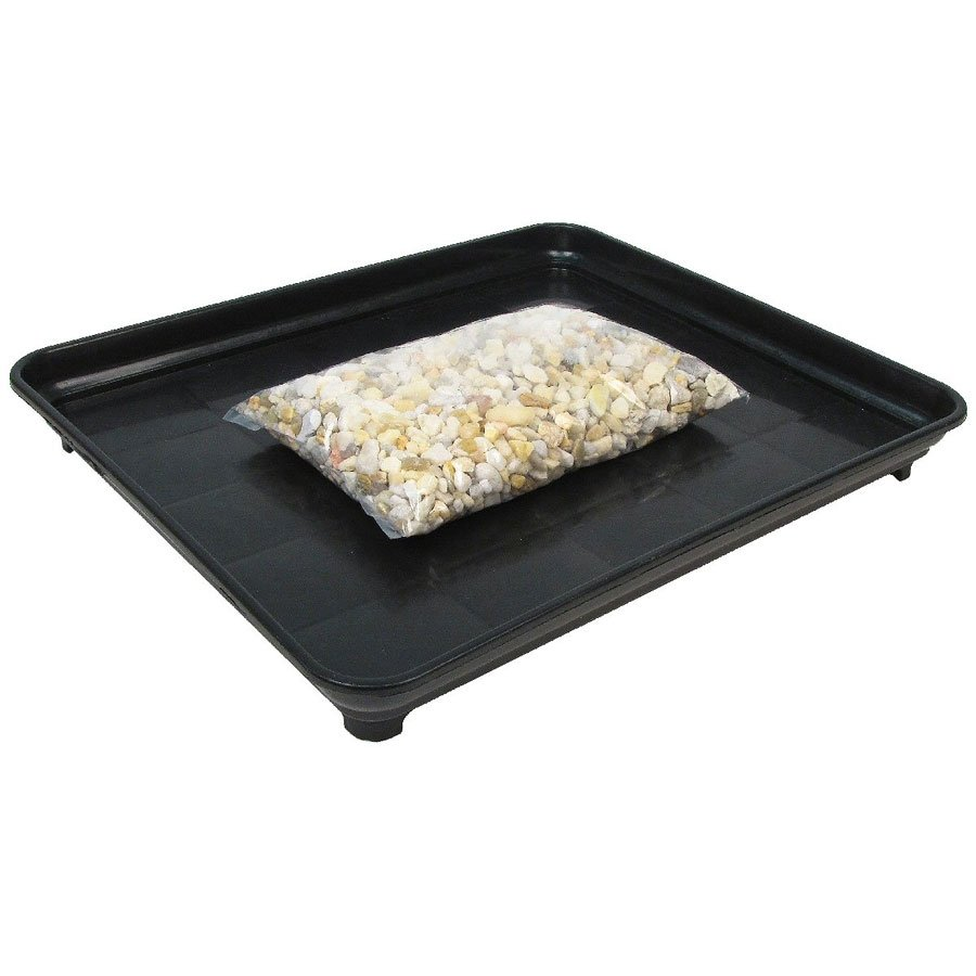 Bonsai Humidity Tray 11x13 With Pebbles Eve S Garden Gifts