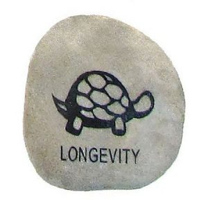 LONGEVITY Animal Dream Stone