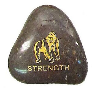 STRENGTH Animal Dream Stone
