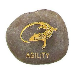 AGILITY Animal Dream Stone