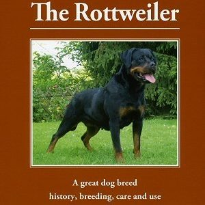 The Rottweiler (Hardcover) by Adolf Pienkoß