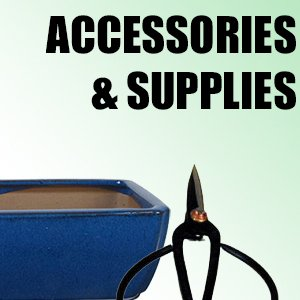 Accessories & Supplies