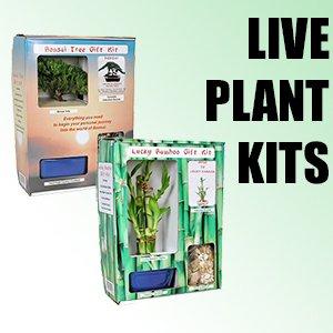 Live Plant Kits